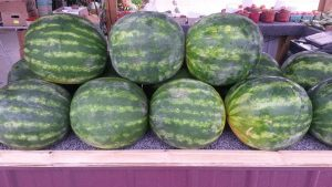 stoplight market watermelon